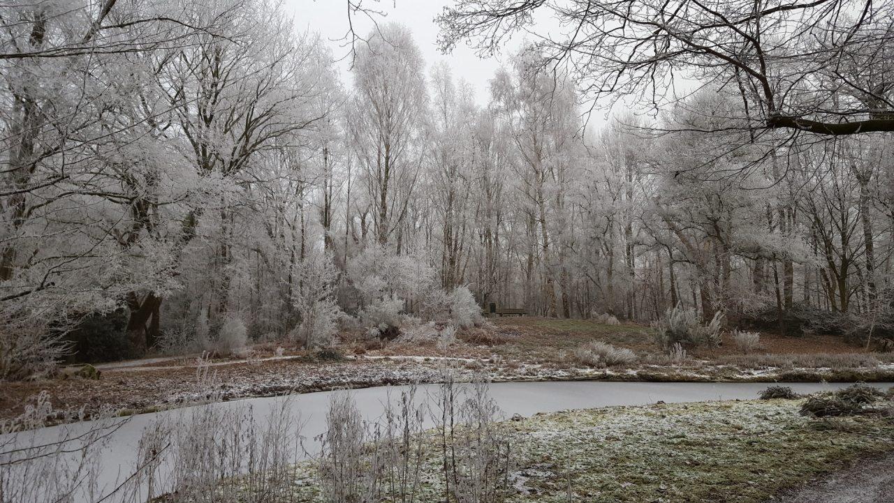 deheuvel_thijssepark