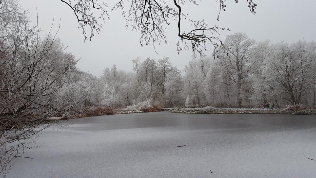 hogebrug_thijssepark