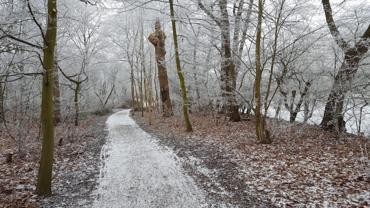 hoofdingang_thijssepark_winter