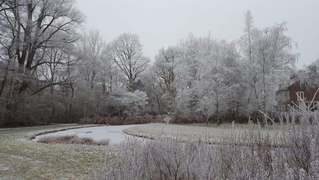 koos_landwehrpark_winter1
