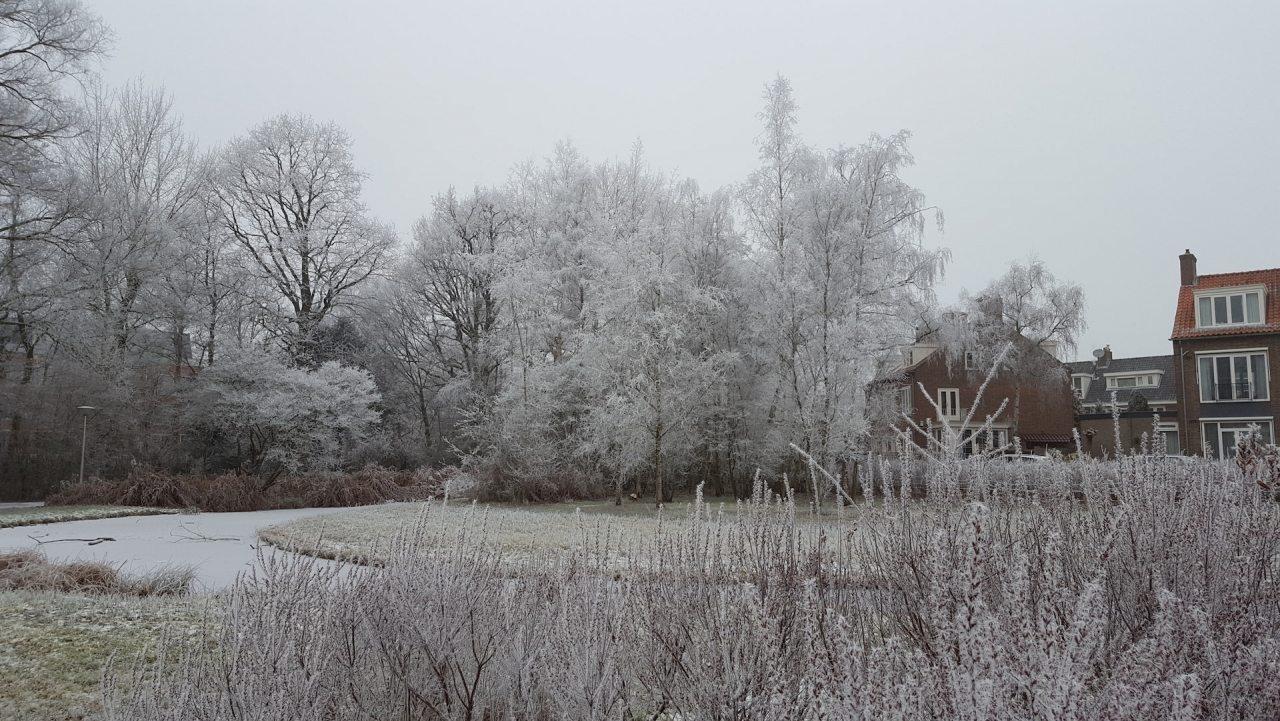 koos_landwehrpark_winter2