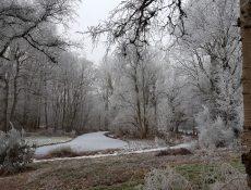 deheuvel_thijssepark3