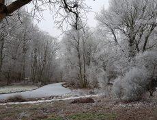 heuvel_thijssepark2